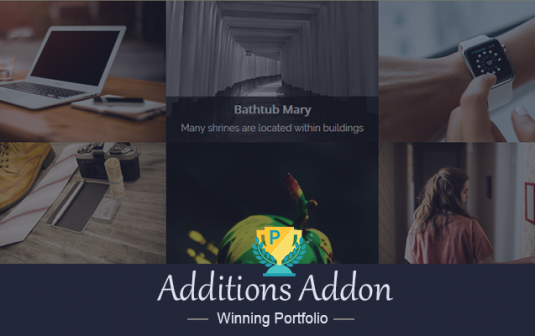 Winning Portfolio Additions Addon