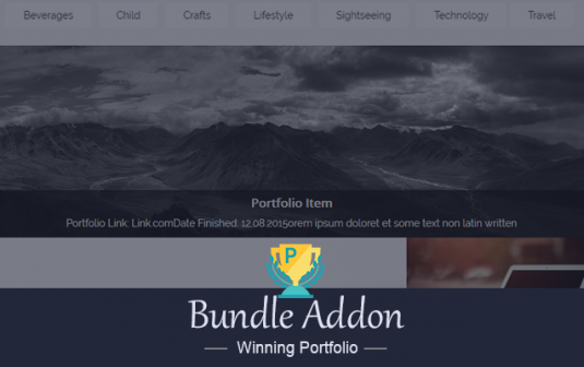 Winning Portfolio Bundle Addon